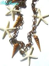 スターフィッシュと巻貝のオーナメント 天然シェル 貝殻 シェル シーシェル seashell  通販